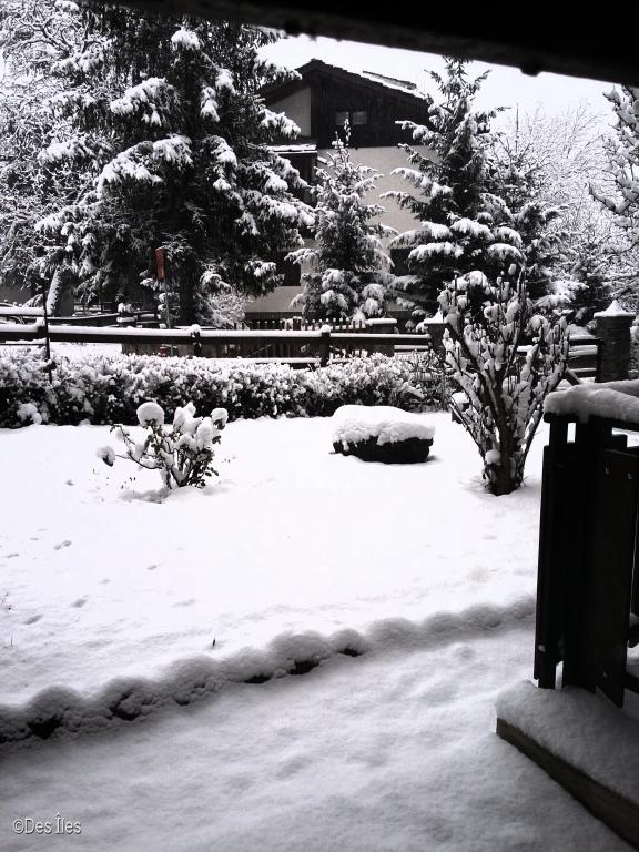 giardino di casa in inverno